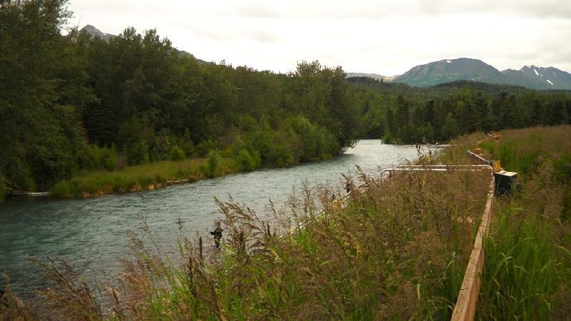 Alaska 2012 racconti e catture pescanetwork forum for Cabine del fiume kenai soldotna ak