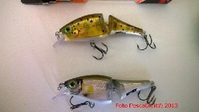 PescaBox.info Immagini e foto di pesca