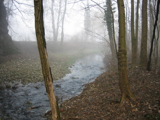 Questa immagine è stata caricata su PescaBox.info Immagini e foto di pesca